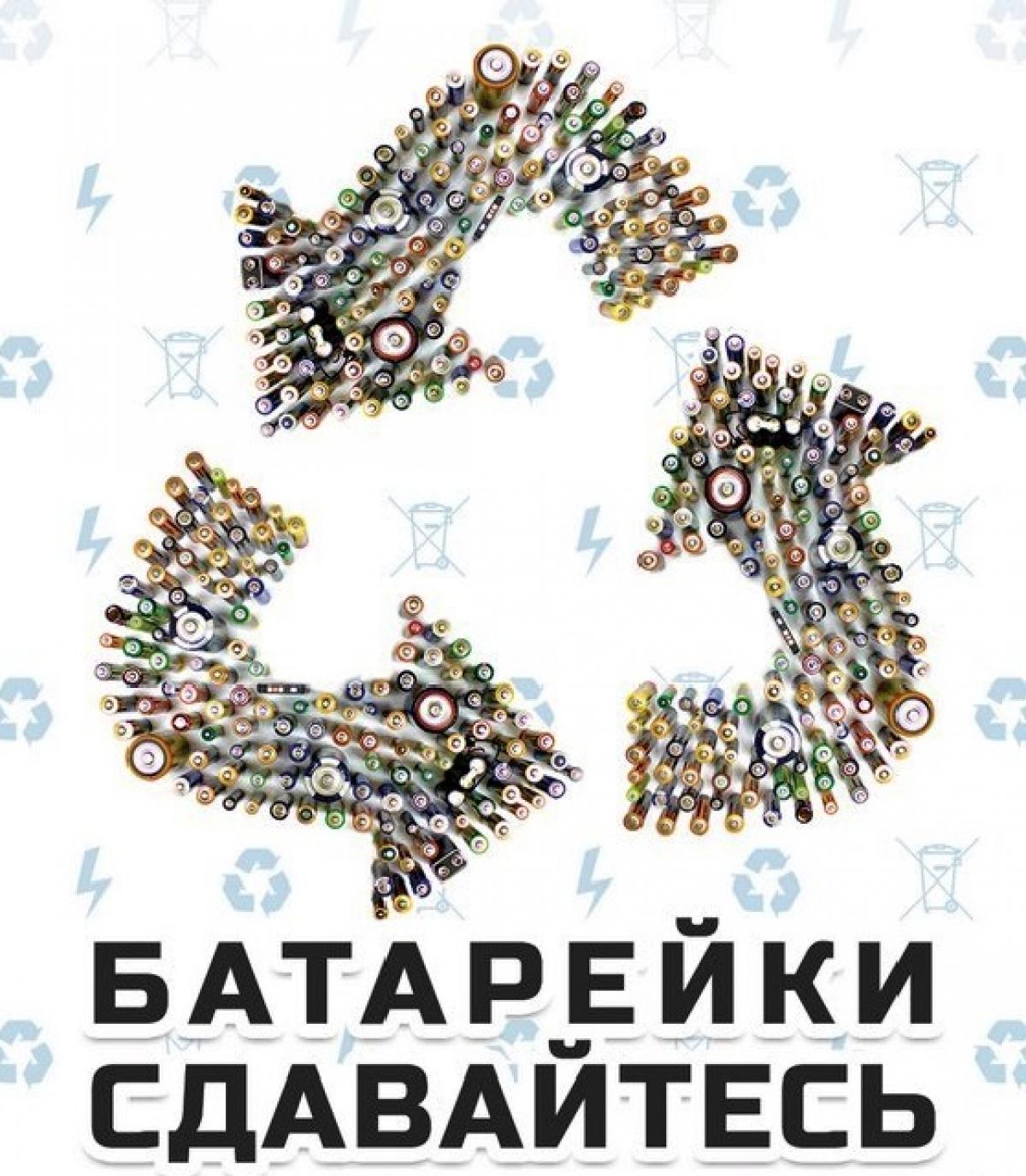 Батарейкина история в Ленинградской области