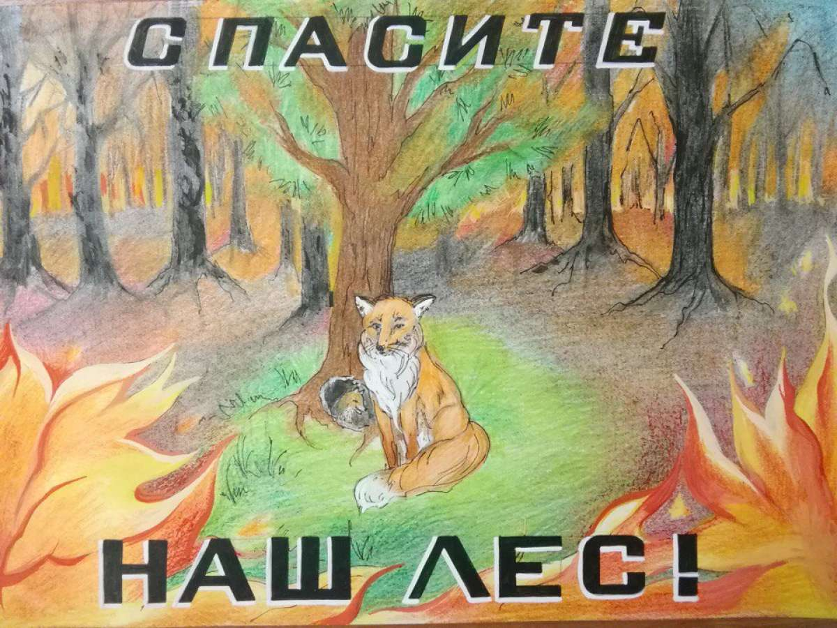 Положение о конкурсе лес боится огня