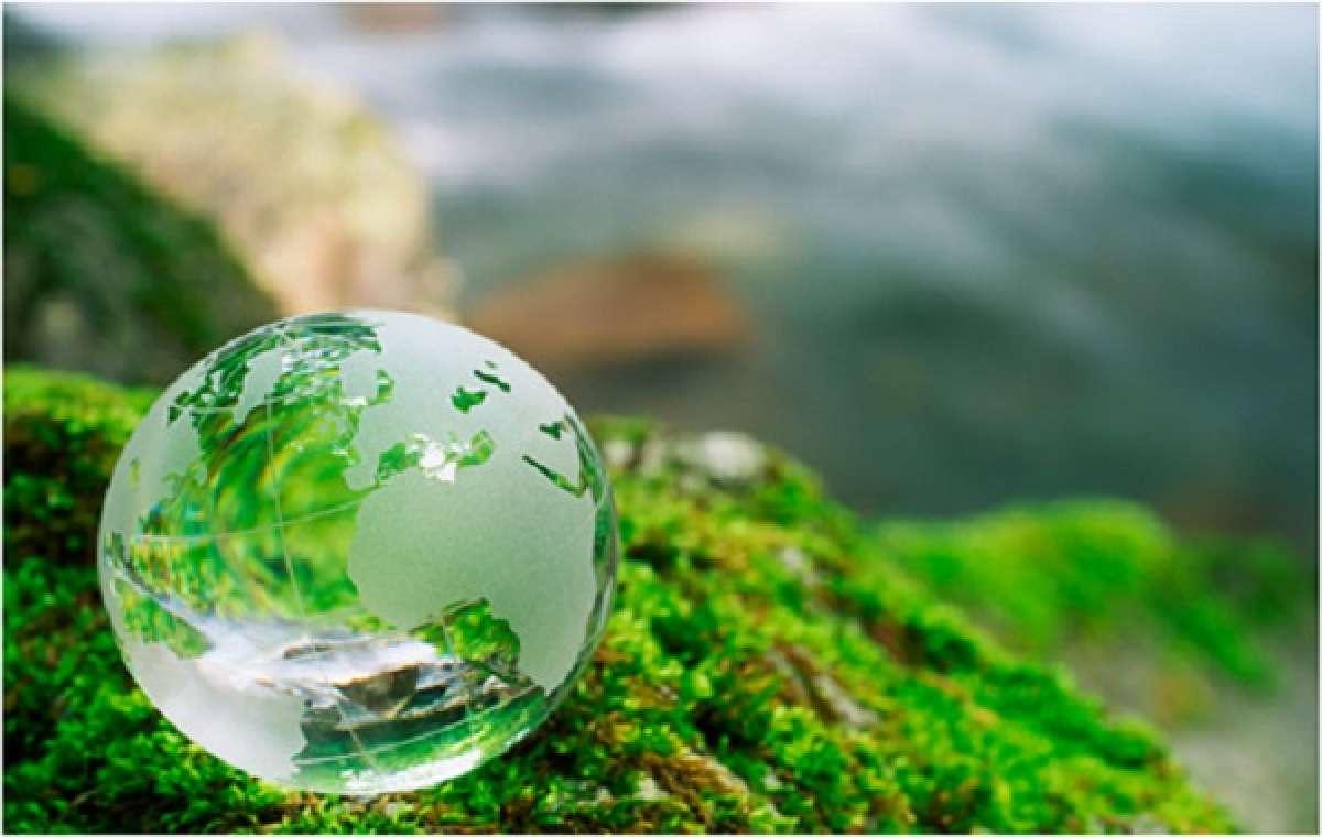Общественная экологическая экспертиза по проекту реконструкции полигона в Ленинградской области