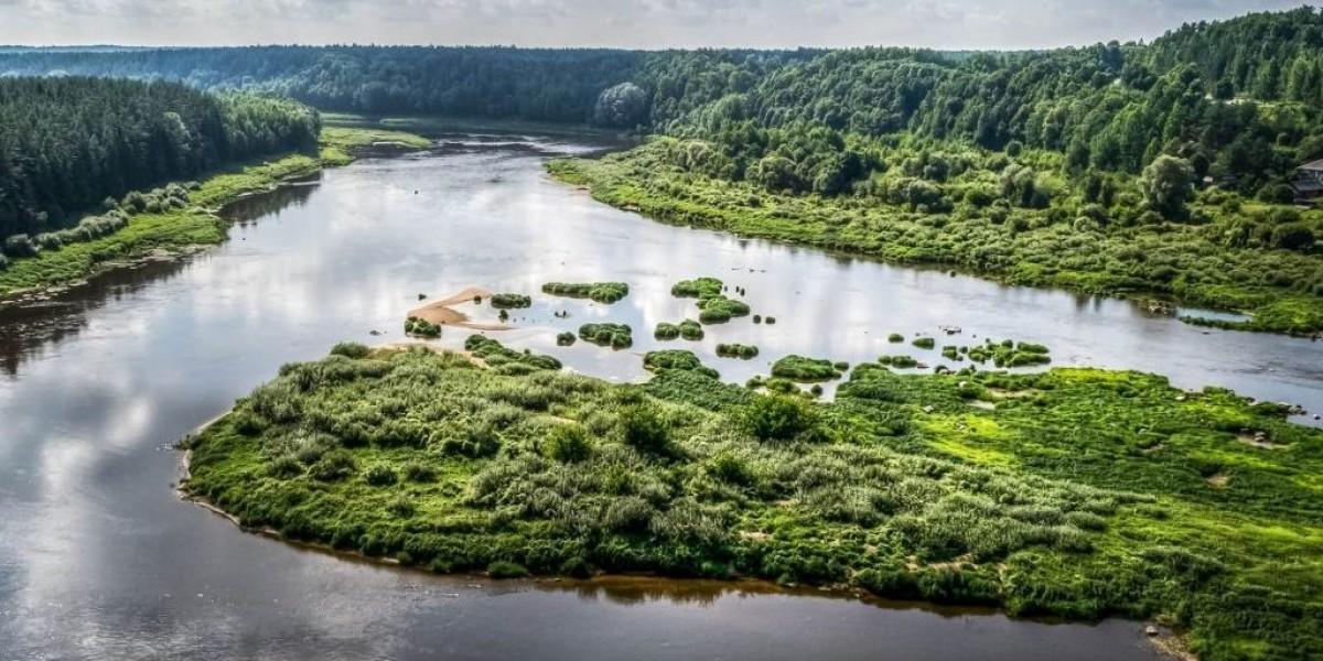 72–НИР/ФЦП-2017 Оценка воздействия биогенной нагрузки  в бассейне реки Западная Двина