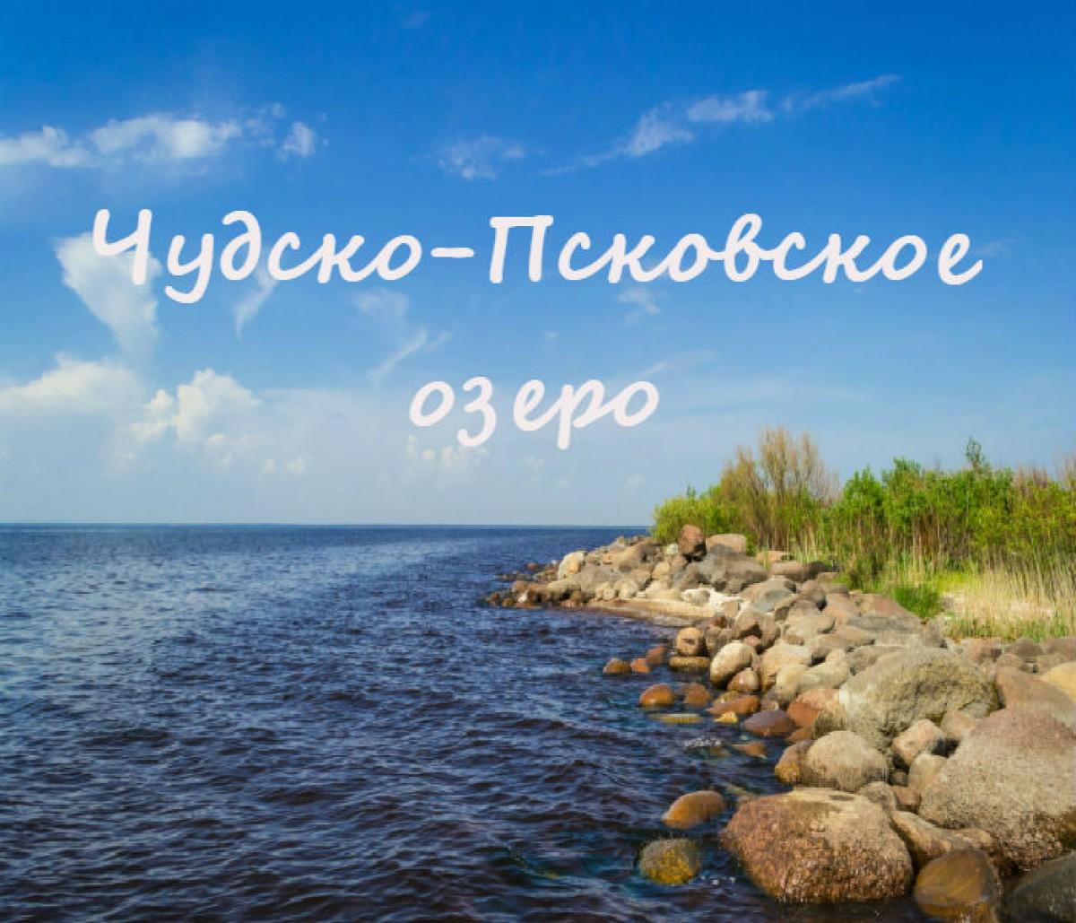 73–НИР/ФЦП-2017 Роль внутренней нагрузки в формировании состояния экосистемы Чудско-Псковского озера